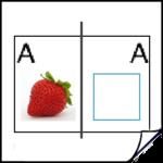 illustraties en foto's leren gebruiken met InDesign