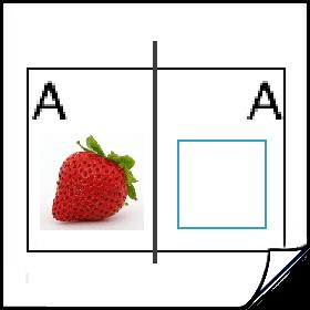 Gebruik verschillende beeldformaten in InDesign